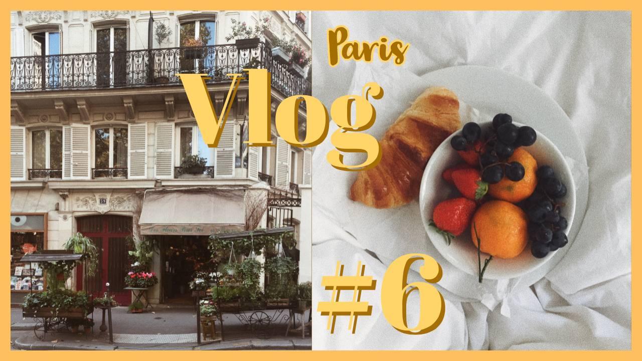 PARIS VLOG #6 // Erkältung // Bücher Haul // neue Picard Tasche